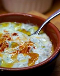 Homemade Tzatziki Recipe - tzatziki sauce