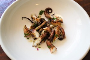 Grilled Octopus Recipe Theo Michaels How to cook octopus