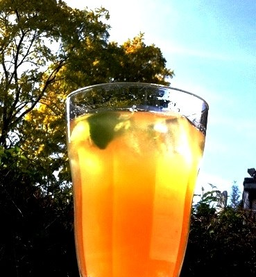 Uncle Mikes Homemade Sugar Cane Drink  Jaggery Recipes