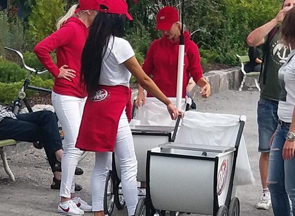 custom outdoor cart