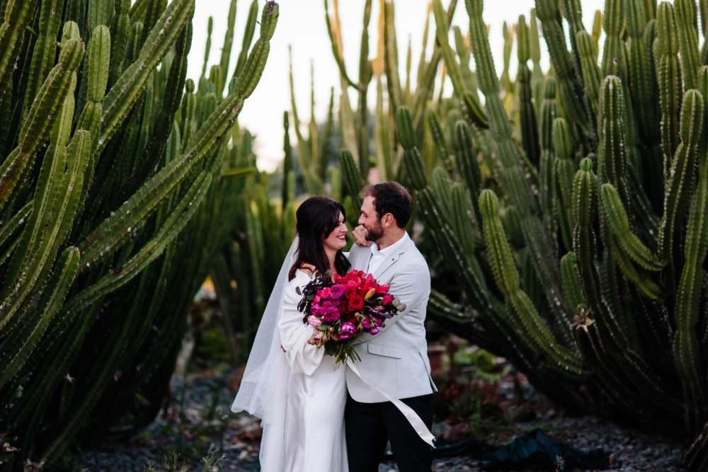 Hamilton Cactus Garden wedding photo of bride and groom at sunset