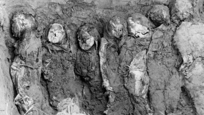 The American Holocaust – by Jim Arnold   VIP News