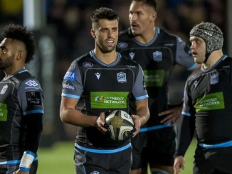 Adam Hastings pulled the strings as Glasgow Warriors racked up 50 points against the Sothern Kings two weekend's ago. Image: Craig Watson - www.craigwatson.co.uk