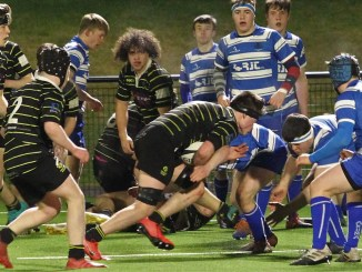 Melrose Wasps came out on top after a ferocious contest against Jed Thistle at The Greenyards. Image: Douglas Hardie