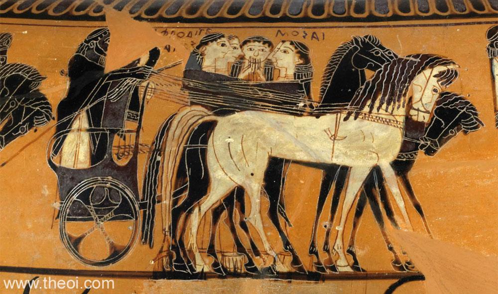 Horses Black Figure Vase Painting