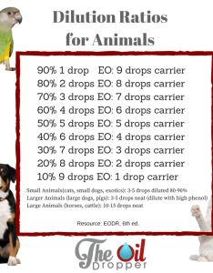 Animal essential oil dilution ratios also using oils on your pets the dropper rh theoildropper