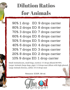 Dilute essential oils with smaller dogs    see pet dilution chart also for your the oil dropper rh theoildropper