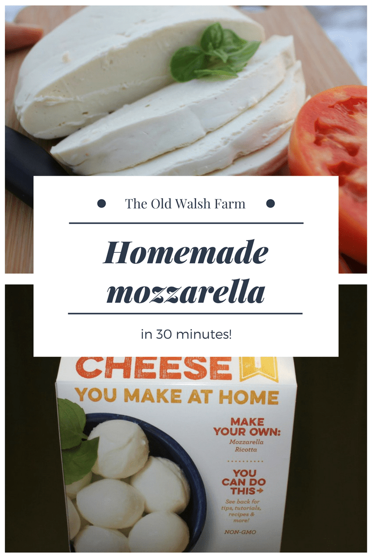 You can make your own homemade mozzarella cheese in just 30 minutes.