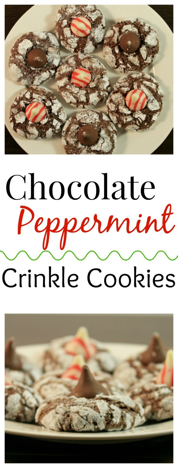 Chocolate Peppermint Crinkle Cookies - a chewy chocolate cookie topped with peppermint kisses!