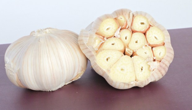 Slice off the top of the garlic bulb so the cloves are exposed.