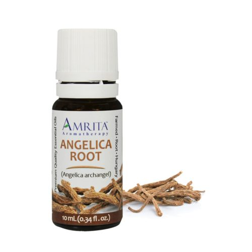 Amrita Essential Oil Angelica Root - EO-10mL at The OM Shoppe in Sarasota, FL