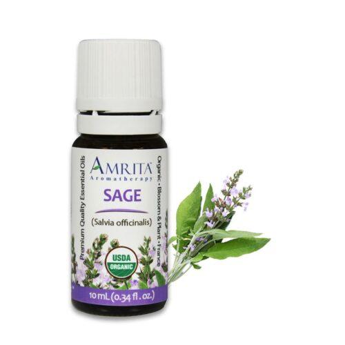 Amrita Essential Oil Sage (French) - Organic EO-10mL at The OM Shoppe in Sarasota, FL