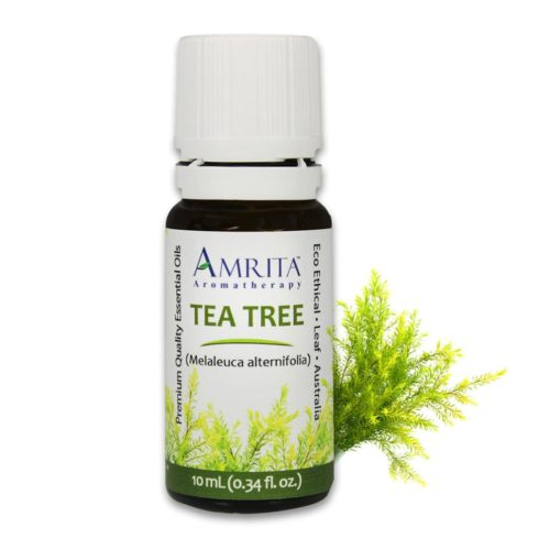 Tea Tree Organic Essential Oil - 10ml