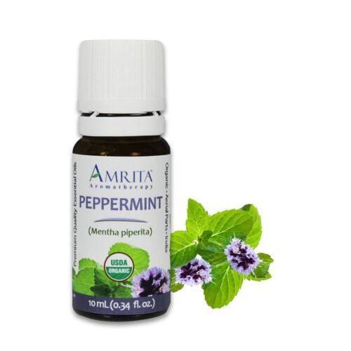Amrita Essential Oil Peppermint - Organic EO-10mL at The OM Shoppe in Sarasota, FL