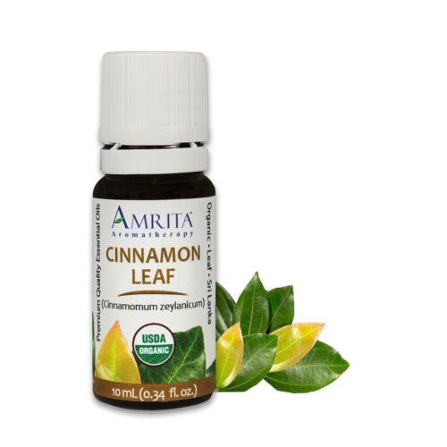 Amrita Essential Oil Cinnamon Leaf - Organic EO-10mL at The OM Shoppe in Sarasota, FL