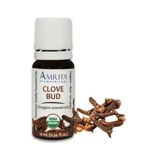 Amrita Essential Oil Clove Bud - Organic EO-10mL at The OM Shoppe in Sarasota, FL