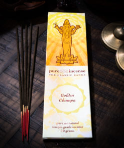 Golden Champa Pure Incense The OM Shoppe