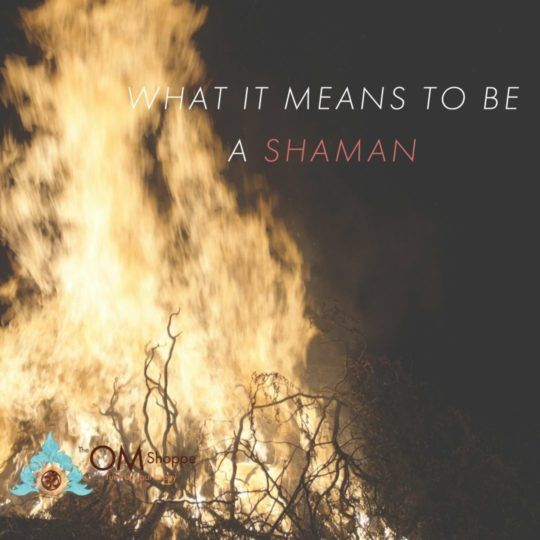What does it mean to be a Shaman 2