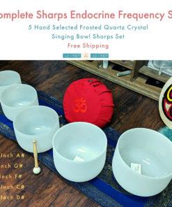 Om shoppe 5 crystal singing bowls chakra set