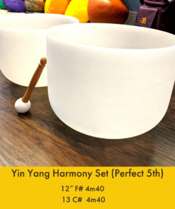 Perfect 5th crystal singing bowl set the om shoppe 12″ F# 4m40 13 C# 4m40