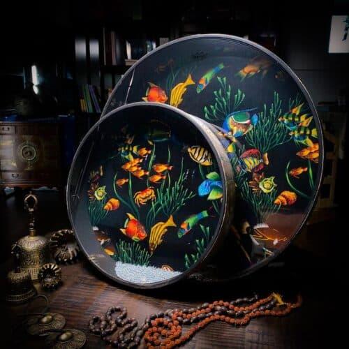 Ocen Drum Fish Design Remo 22 inch and 16 inch