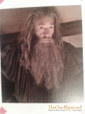 2012-10-19 16.40.48 - Gandalf at Bag End-imp