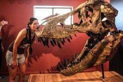 Kili and a T-Rex recreate the famous Thorin & Smaug scene