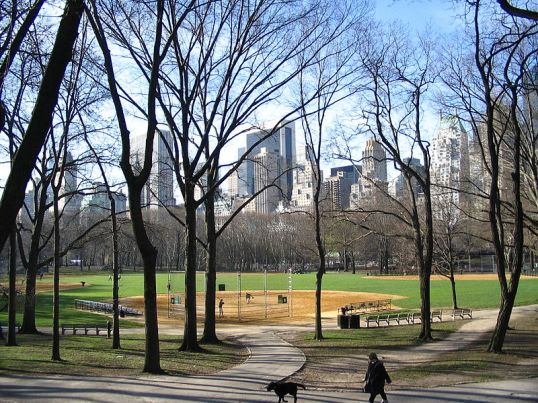 """""""Central park2"""" by Albert kok -©Wikimedia image commons"""