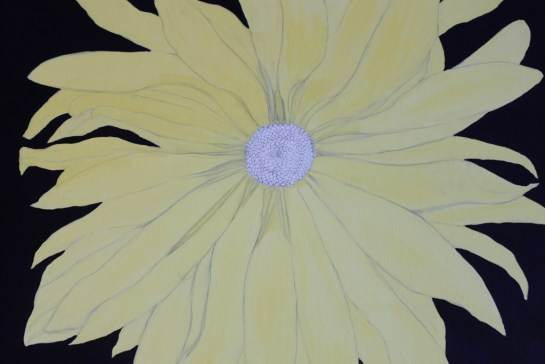 Yellow Daisy (3)