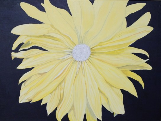 Yellow Daisy (5)