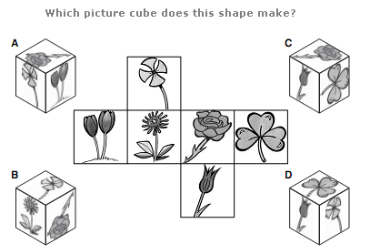 Logical Puzzles Test Questions and Answers