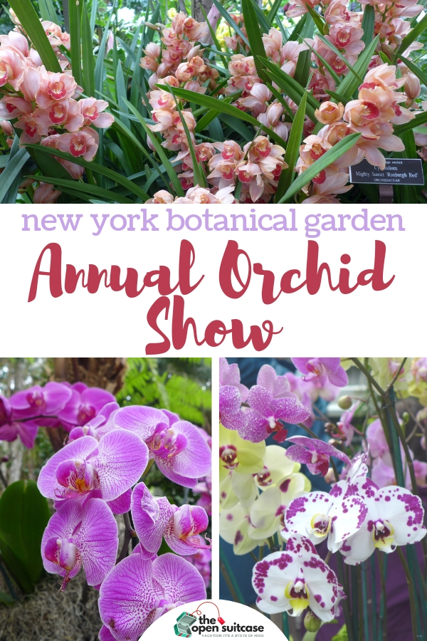 The Annual Orchid Show at the New York Botanical Garden is a sure sign that spring is on the way. The 2019 exhibit celebrates the orchid-loving culture of Singapore. #thingstodo #bronx #nyc #garden #orchidcare