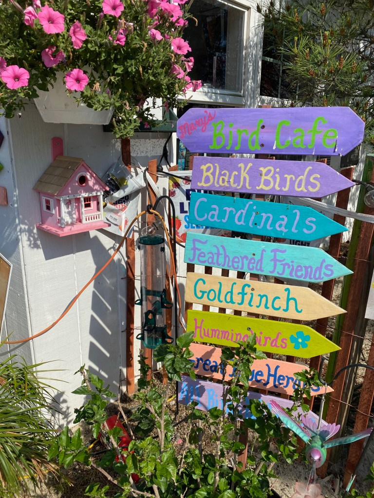 Colorful painted signs with bird names and a bird house in Delaware