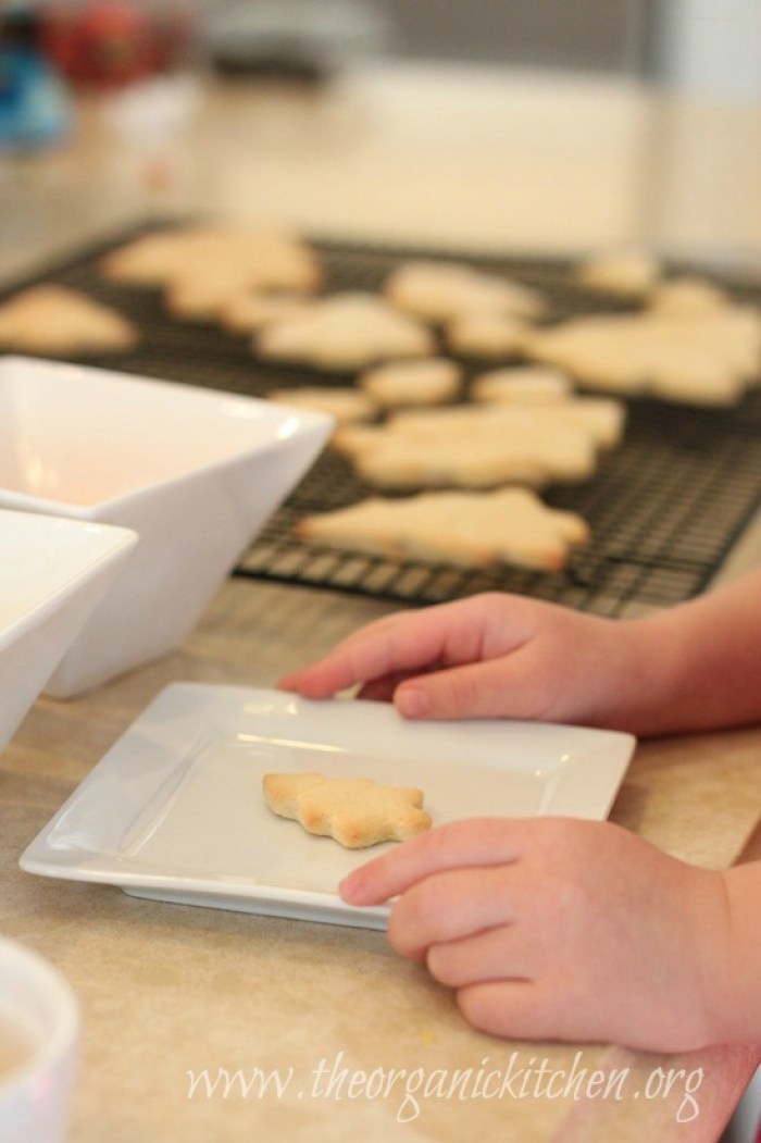 Traditional Rolled Sugar Cookies on cooking rack with child's hands holding plate with cookie on it