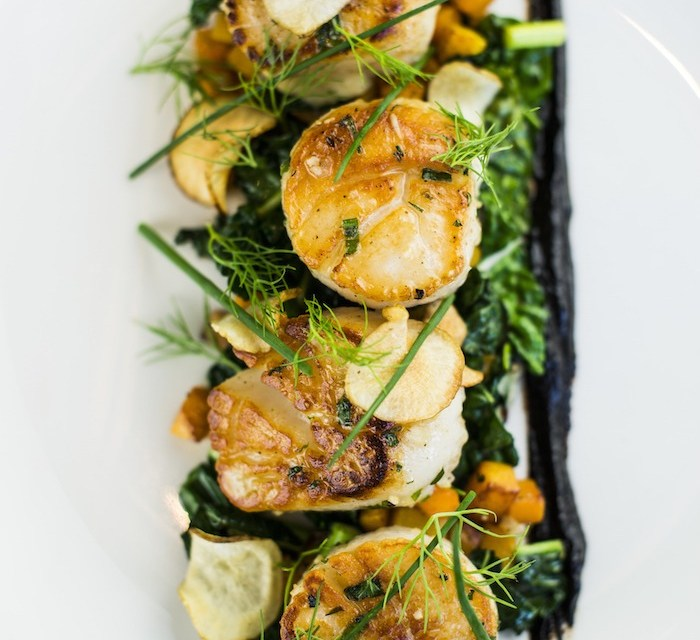"""My Favorite Restaurant Series"": The Waldorf Astoria Park City ~ Divers Scallops"
