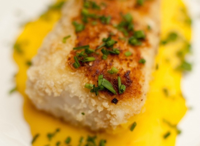 Macadamia Nut Crusted Halibut with Mango Sauce