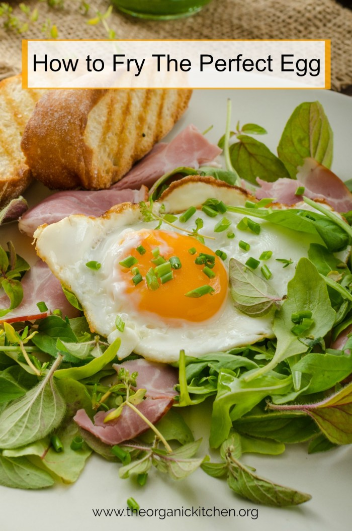 A fried egg in a bed of lettuce and ham: How To Fry the Perfect Egg!