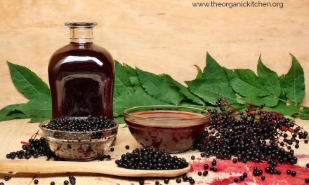 Elderberry Syrup with Low Carb Option!