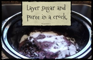 Layer sugar and puree