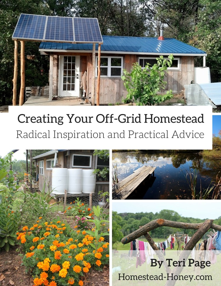 Creating-Your-Off-Grid-Homestead-750x971