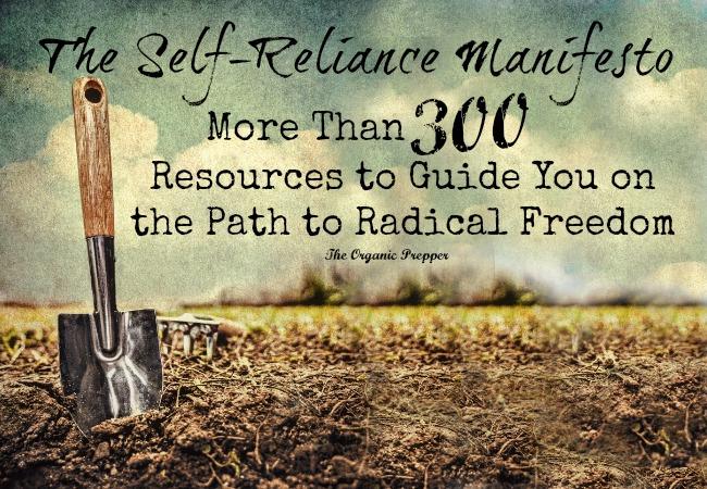 The Self Reliance Manifesto