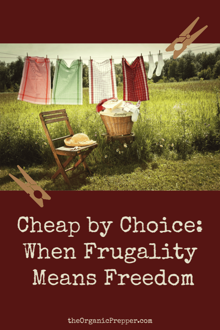 Cheap by Choice: When Frugality Means Freedom