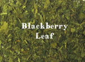blackberry-leaf__large