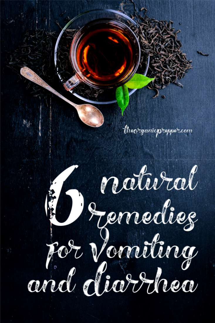 Vomiting and diarrhea are truly miserable. These natural remedies can help keep gastrointestinal symptoms at a tolerable level.| The Organic Prepper