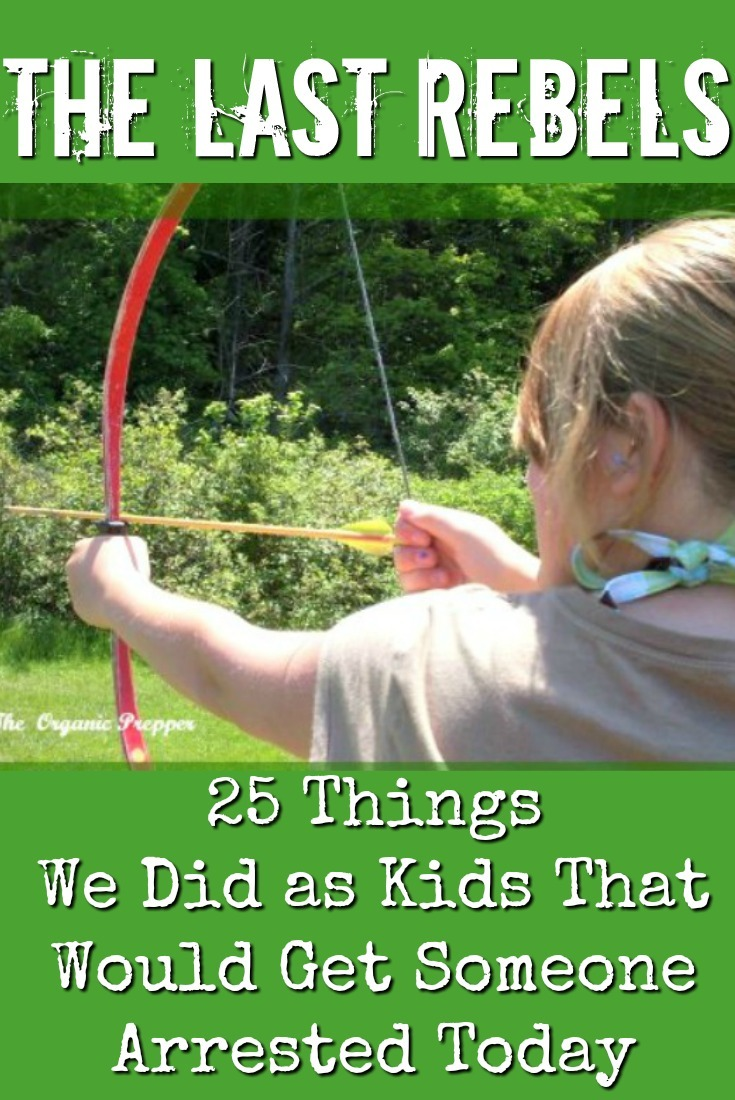 Raise your hand if you survived a childhood in the 60s-70s-80s that included one or more of these frowned-upon activities & both hands if you got a participation scar.| The Organic Prepper