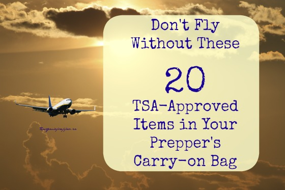 Here are 20 items you can bring onto a plane without getting tackled to the ground by 3 TSA goons while sirens blare ,lights flash, and the PA system announces that you are a terrorist who was planning to hijack the nearest 747.