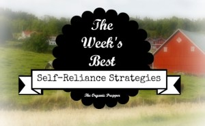 Jan 20 Self Reliance Strategies of the Week