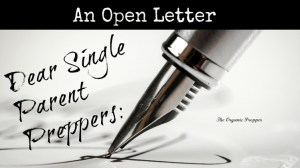 An open letter to single parent preppers