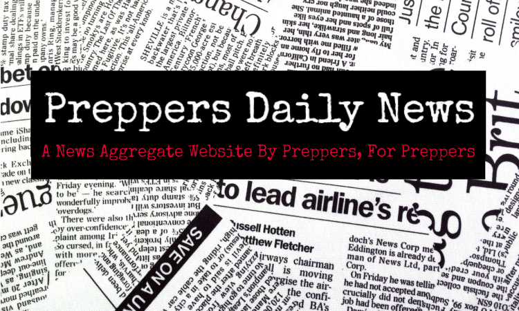 Image result for daisy Luther Preppers daily news logo