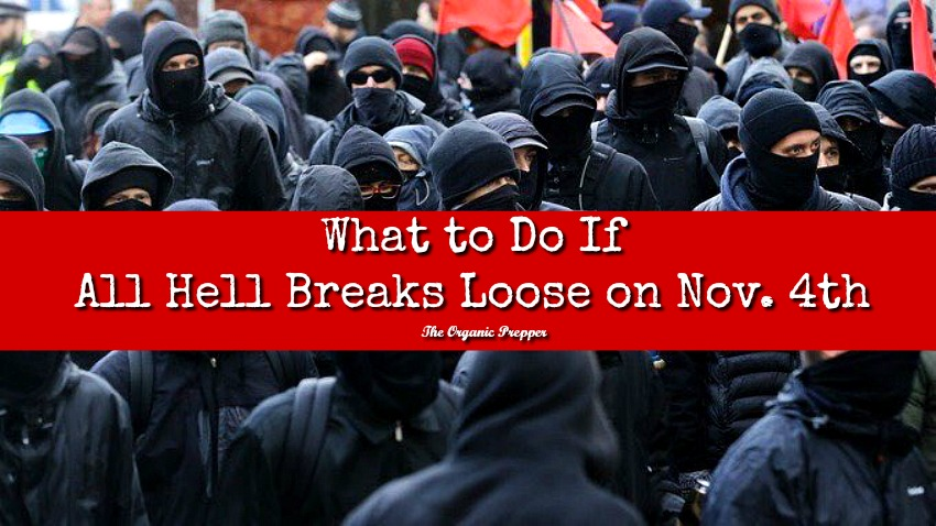 What to Do If All Hell Breaks Loose on Nov  4th - The Organic Prepper